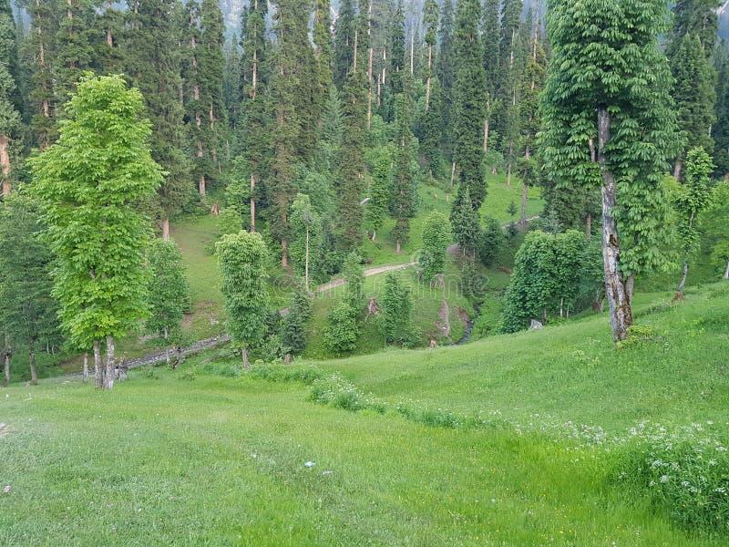 Beauty Peace Love Pakistan Kashmir. Clean, green, , , , neelam, arang-kel stock photography