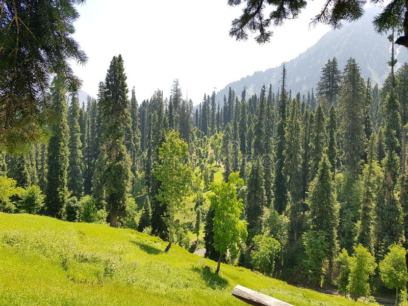 Beauty Peace Love Pakistan Kashmir. Clean, green, , , , neelam, arang-kel stock image