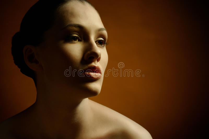 Download Beauty Portrait Royalty Free Stock Photography - Image: 16214217
