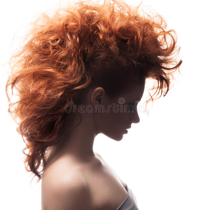 Beauty Portrait. Hairstyle royalty free stock photography