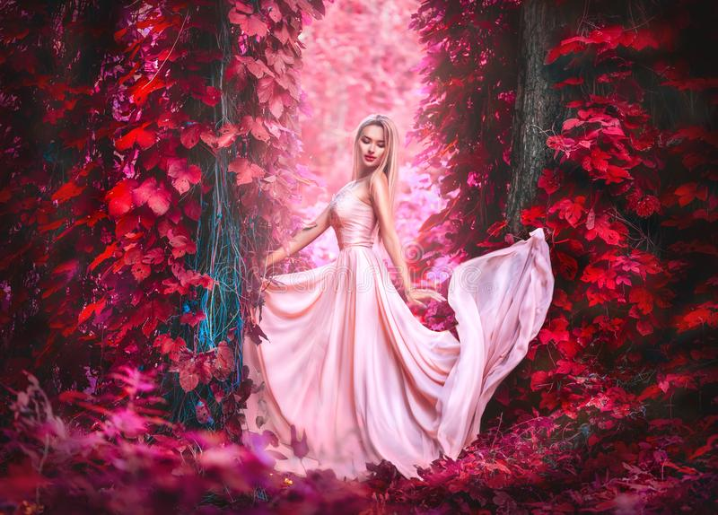 Beauty romantic young woman in long chiffon dress with gown posing in fantasy misty forest. Beautiful happy bride model girl royalty free stock image