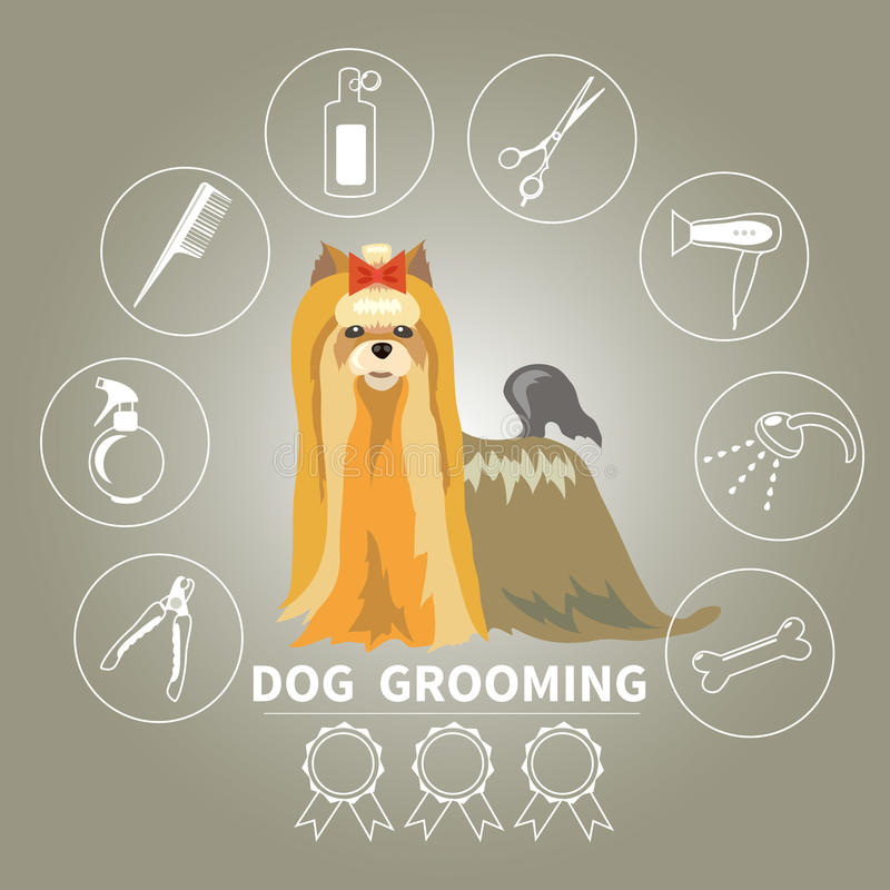 Beauty Grooming Style: Beauty Salon For Animals Stock Vector