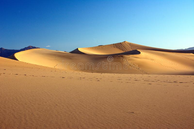 The beauty of the scenery Hot and dry sand dunes in Morocco royalty free stock images