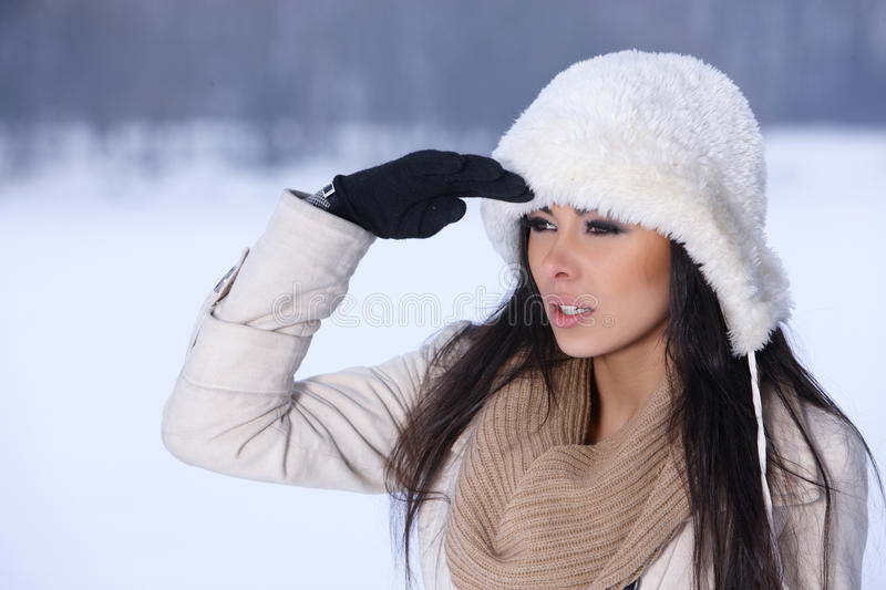 Download Beauty On Snowy Outdoors Stock Photo - Image: 17292120
