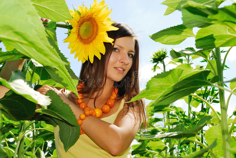 Beauty in sunflowers. Young beautiful woman in sunflowers stock photography