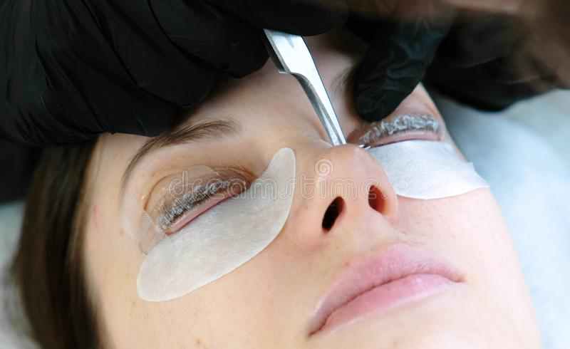 Beauty treatment. Cosmetologist removes the solution from the lashes with tweezers. lash lamination. Closeup face. stock images