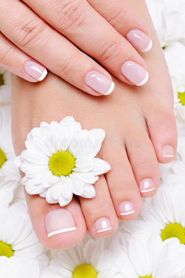 Free Beauty Treatment For Female Hands And Feets Stock Image - 11894261