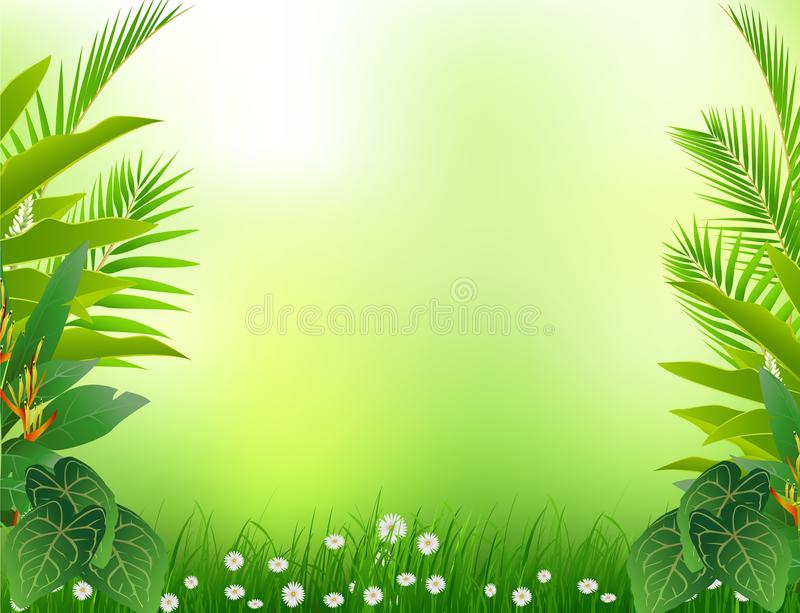 Beauty tropical forest background royalty free illustration