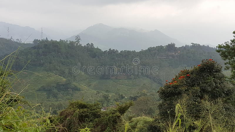Beauty of up country in Sri Lanka. This beautiful site is located in Nawalapitiya - Dolosbage road, Central province, Sri Lanka stock image