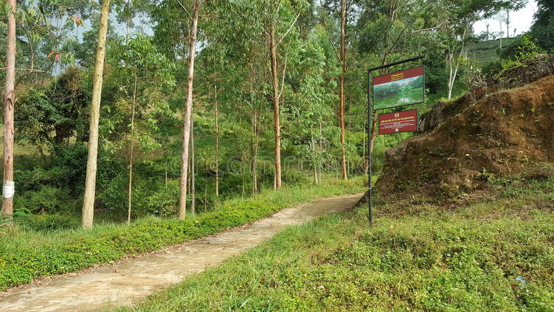 Beauty of up country in Sri Lanka. This beautiful site is located in Nawalapitiya - Dolosbage road, Central province, Sri Lanka. This board is near a lake which royalty free stock photos