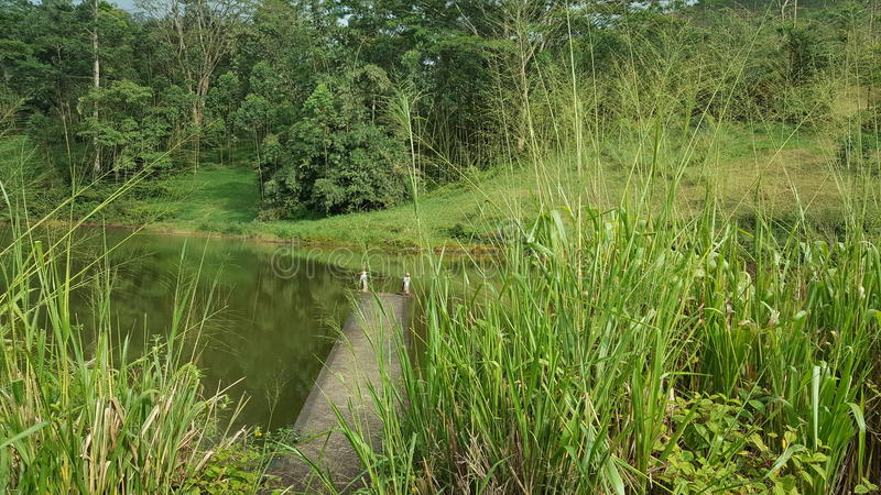Beauty of up country in Sri Lanka. This beautiful site is located in Nawalapitiya - Dolosbage road, Central province, Sri Lanka. This lake is now called as stock images