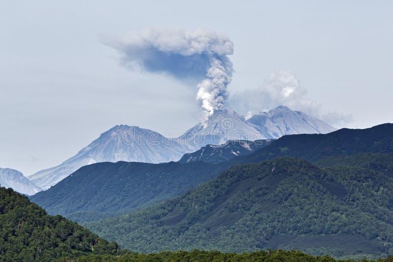 Beauty volcanic landscape: eruption active volcano. Beautiful mountain (volcanic) landscape of Kamchatka Peninsula: eruption active Zhupanovsky Volcano on stock photo