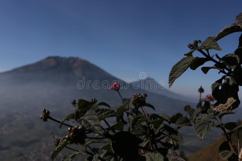 The scenery and panoramic beauty of the mountain royalty free stock photos