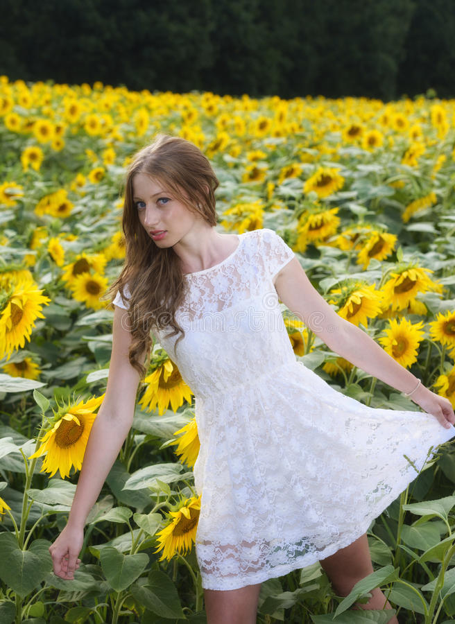 Download Beauty Young Woman In Sunflower Field Stock Photo - Image: 32354954