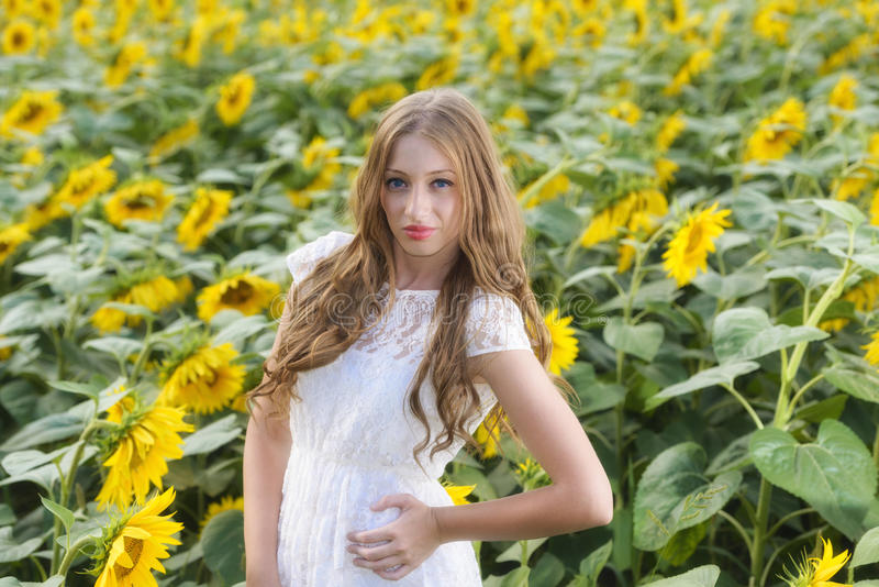 Download Beauty Young Woman In Sunflower Field Stock Photo - Image: 32355002
