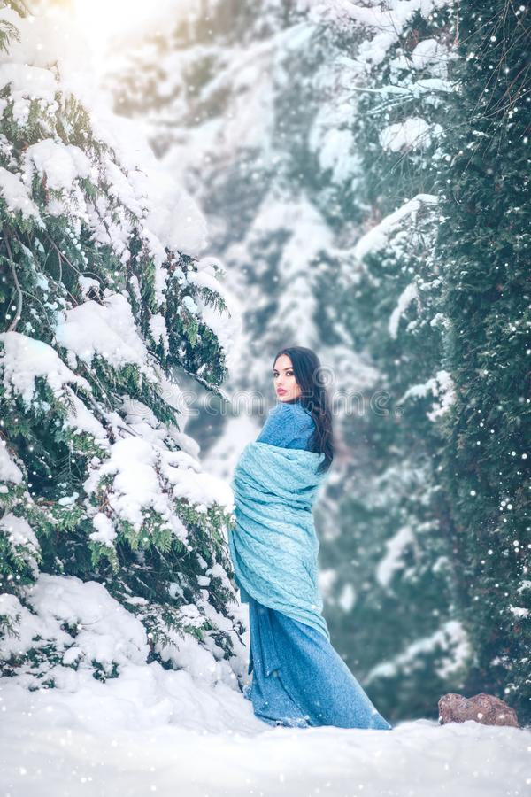 Beauty young woman walking outdoors in winter park under the fir tree covered snow. Beautiful model girl posing. In old winter forest in long dress stock images