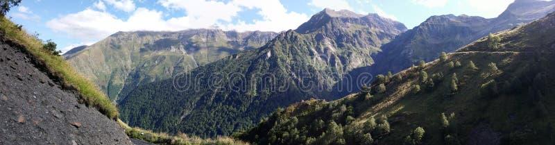 Beautyful de Pyreneeën stock foto's