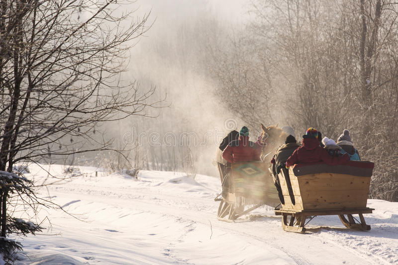 Beautyful sleigh in the winter trough the forest. royalty free stock image