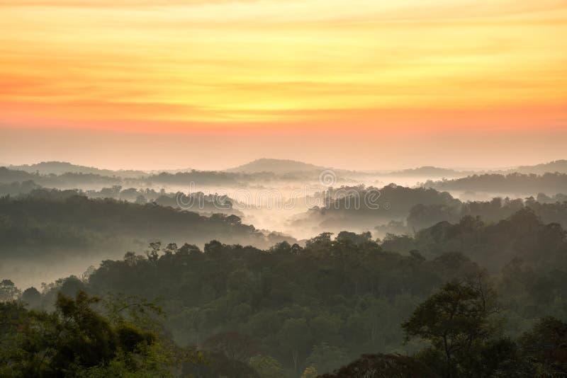 Beautyful-Sonnenaufgang im Gebirgslandschaftswald lizenzfreies stockfoto
