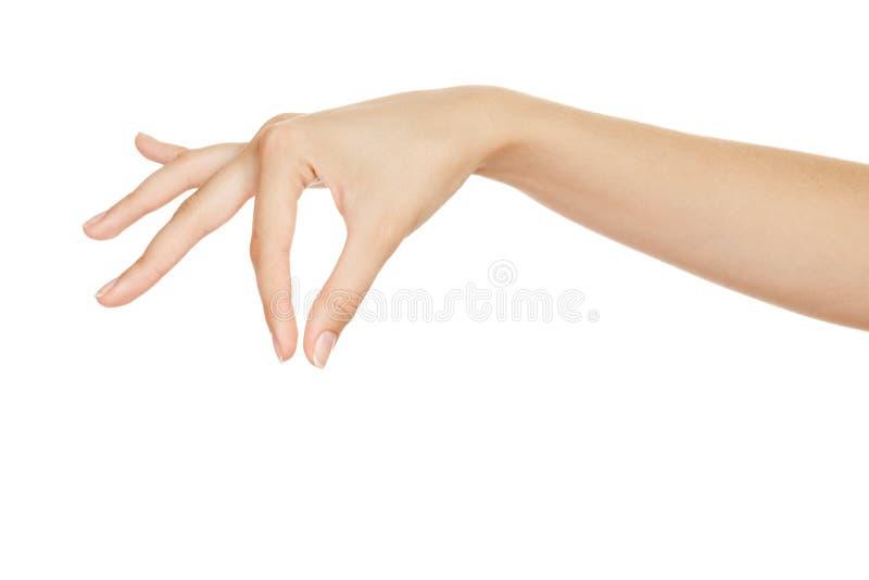 Beaux éléments de fixation de main de femme image libre de droits