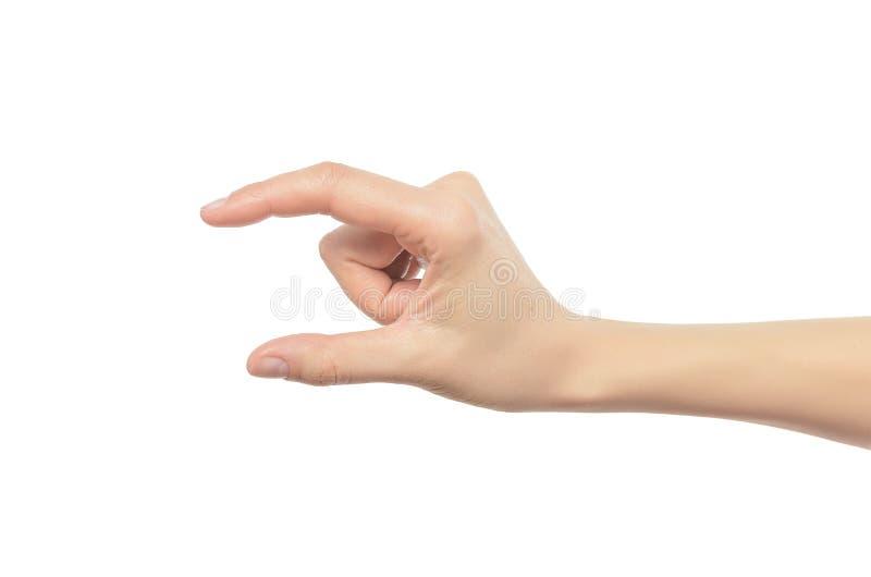 Beaux éléments de fixation de main de femme images stock