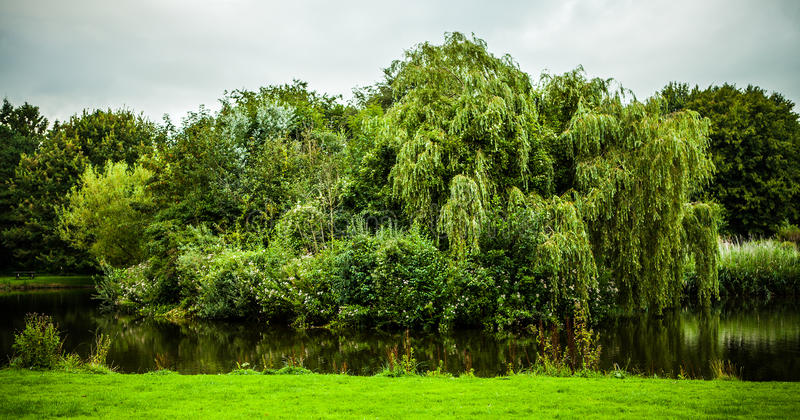 Beaux éléments néerlandais de parc de ville en gros plan photo libre de droits