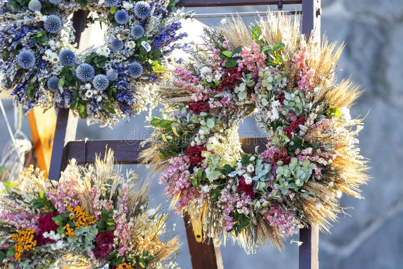 Beaux anneaux de fleur image libre de droits