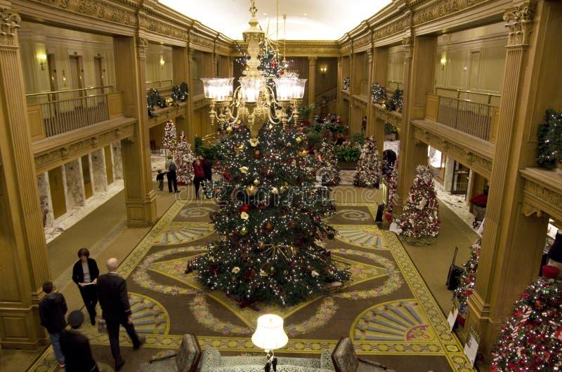 Beaux arbres de Noël dans un hôtel de luxe images libres de droits