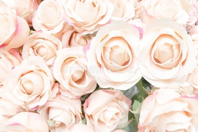 Beaux art et métier des roses roses molles faites en tissu photographie stock libre de droits
