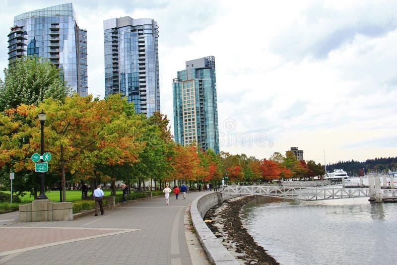 Beaux bâtiments, horizon, feuilles d'arbre d'automne, couleur de chute, port de charbon à Vancouver du centre, Colombie-Britanniq photo libre de droits