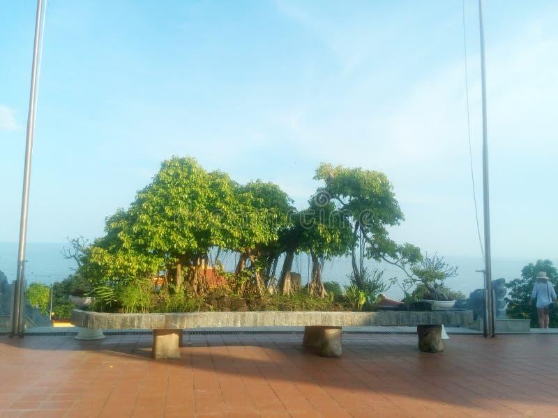 Beaux bonsaïs dans le temple par la mer photo stock