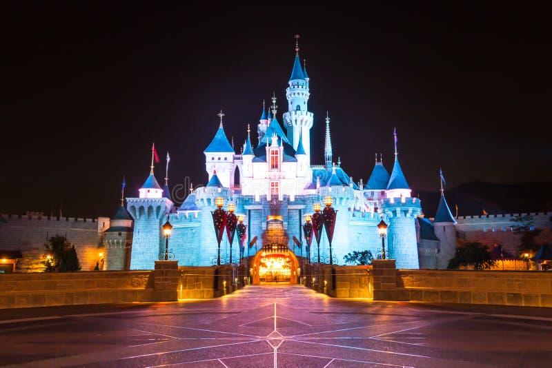 Beaux château et ciel nocturne images libres de droits
