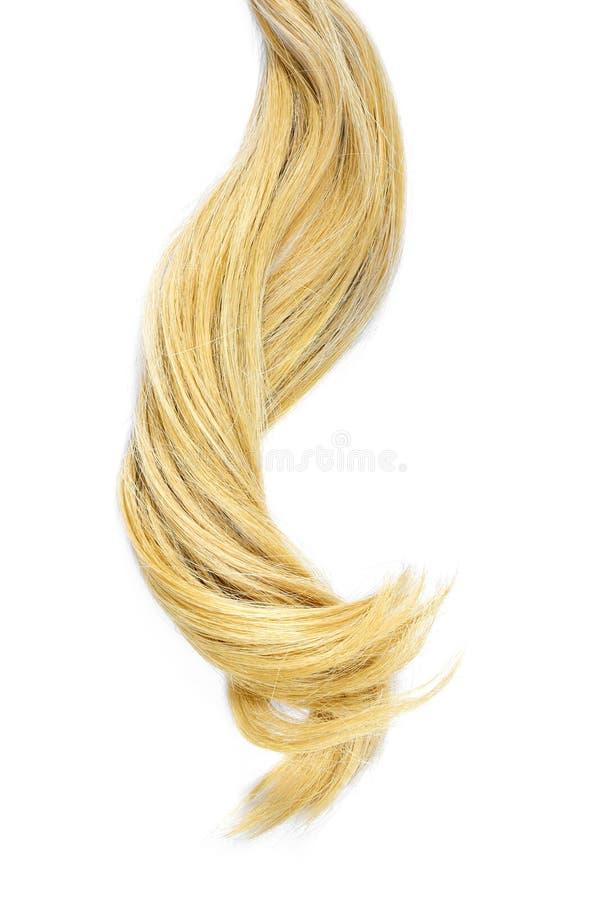 Beaux cheveux blonds, d'isolement sur le fond blanc image libre de droits