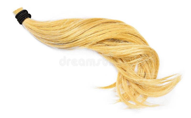 Beaux cheveux blonds, d'isolement sur le fond blanc photographie stock libre de droits