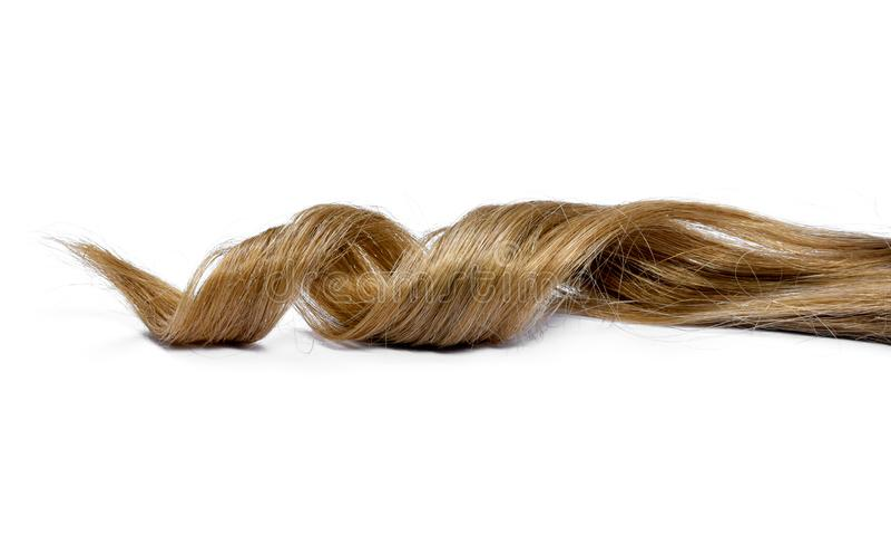 Beaux cheveux de brune, d'isolement sur le fond blanc photo libre de droits