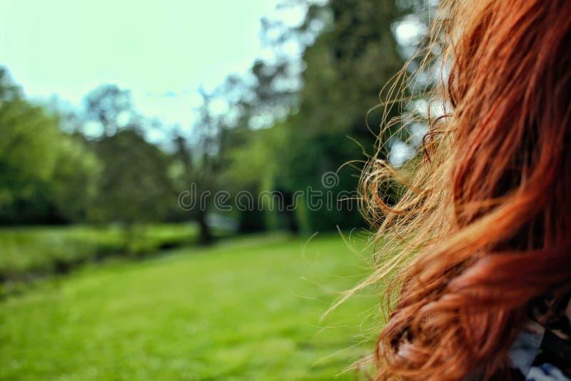 Beaux cheveux rouges et fond blury gentil photographie stock