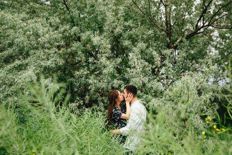 Beaux couples affectueux se reposant dans le domaine d'été sur le fond d'arbre d'herbe verte et d'oleaster photo stock