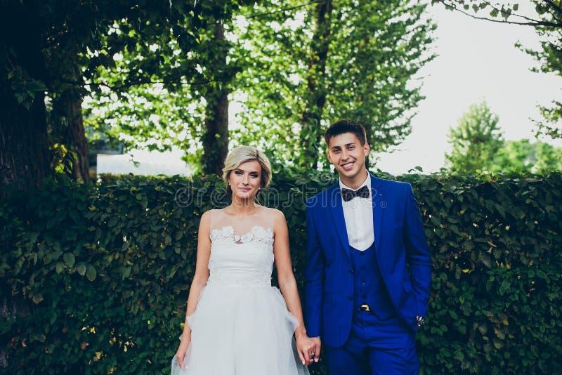Beaux couples de mariage posant en parc images stock