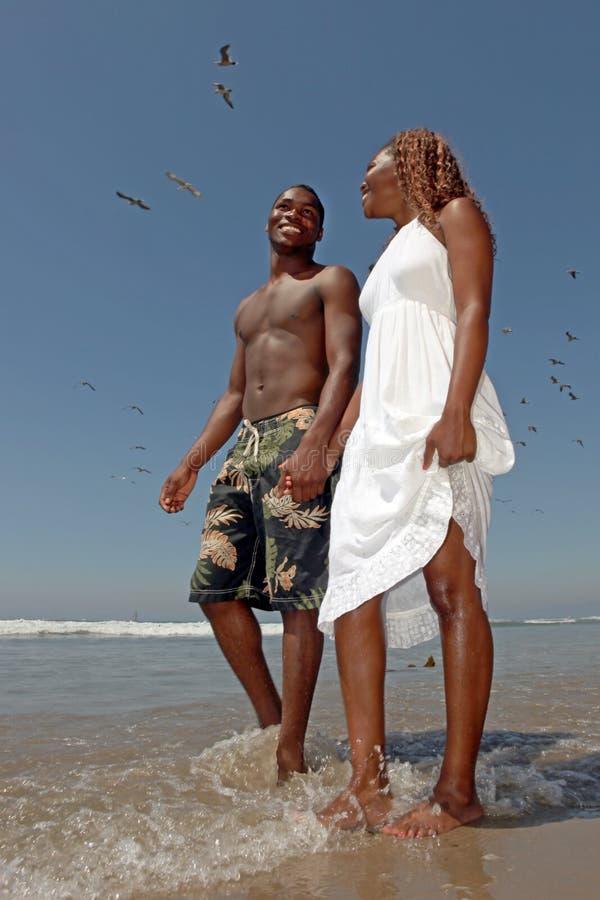 Beaux couples heureux marchant le long de la plage photo stock