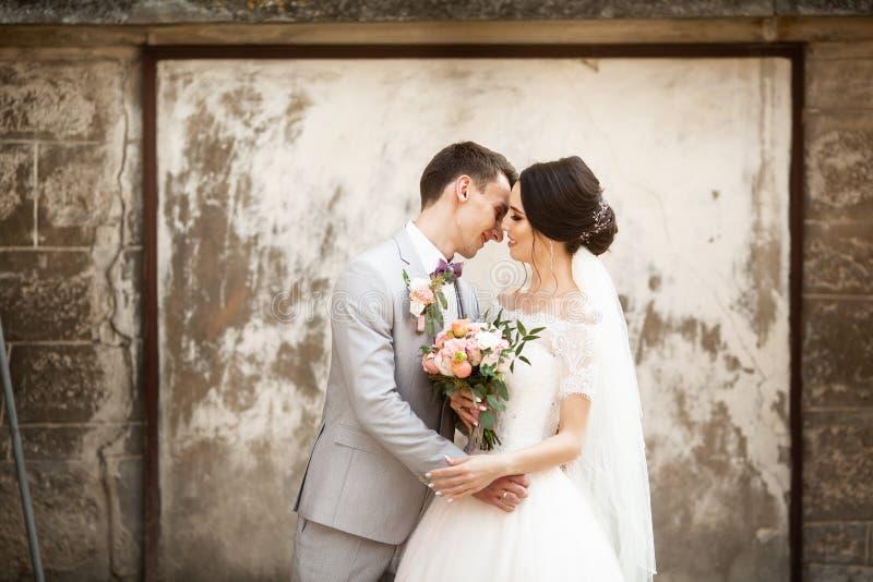 Beaux couples les épousant embrassant près du vieux mur photo stock