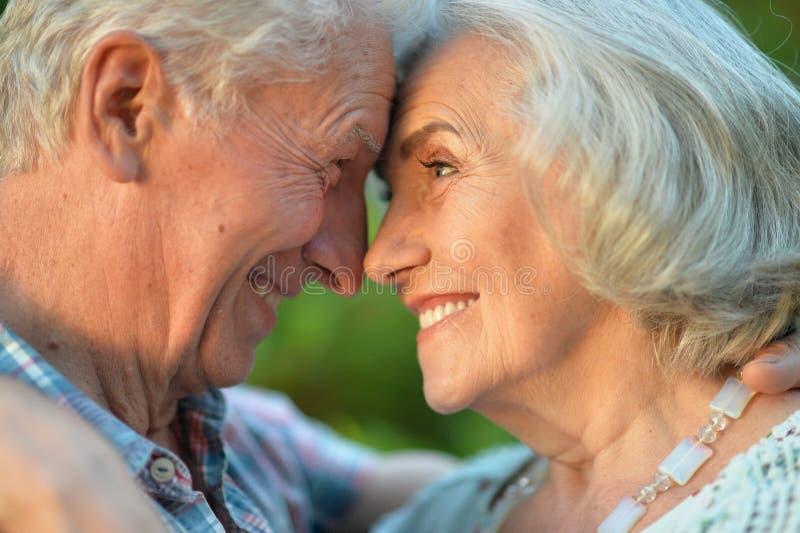 Beaux couples supérieurs étreignant en parc d'été photos libres de droits