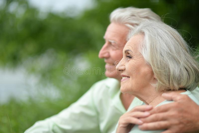 Beaux couples sup?rieurs posant en parc photo stock