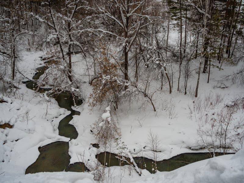 Beaux croquis de la forêt couverte de neige d'hiver en Russie photo stock