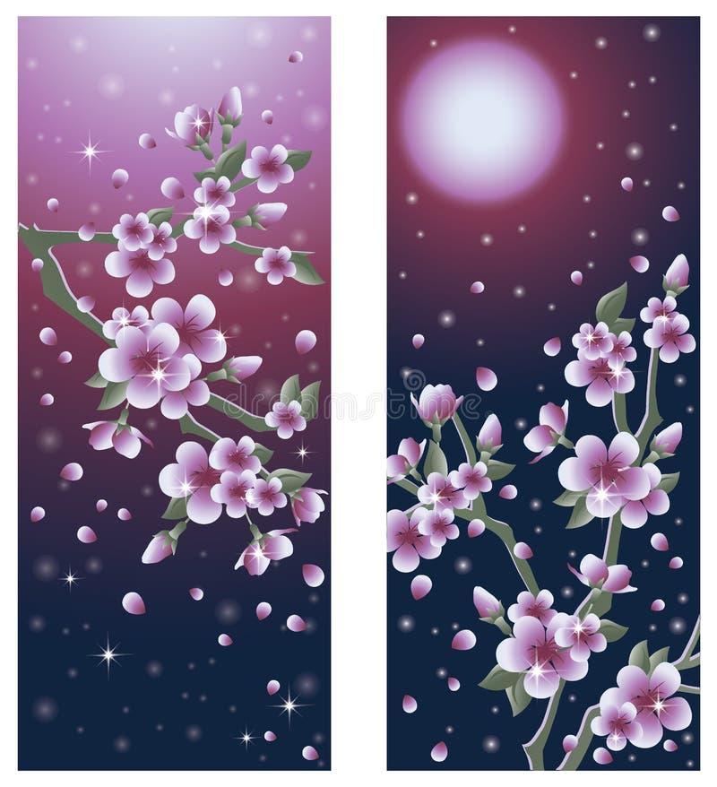 Beaux drapeaux de Sakura illustration stock