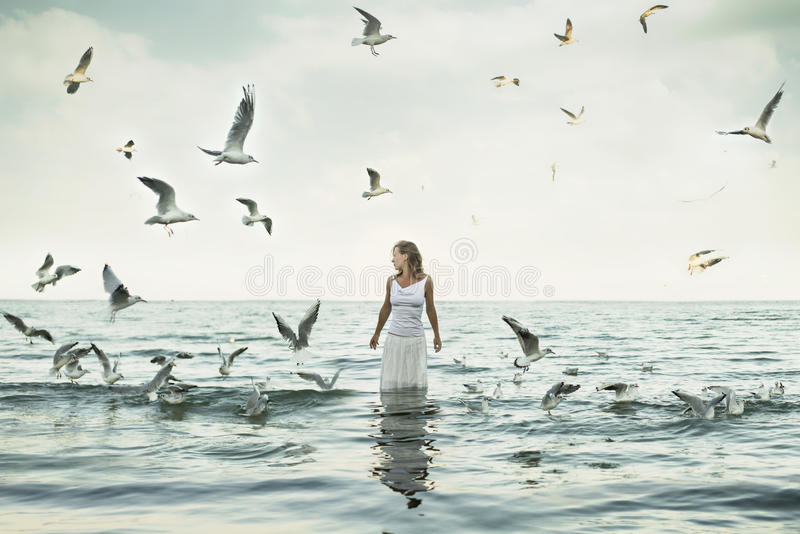 Beaux femme et seaguls sur la plage image stock