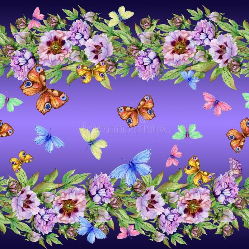 Beaux fleurs et papillons de pivoine sur le fond pourpre Modèle floral sans couture, frontière Peinture d'aquarelle illustration de vecteur
