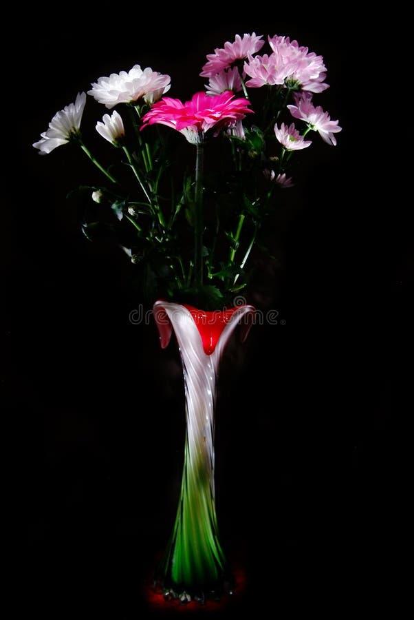 Beaux gerbera et chrysanthemum photos libres de droits
