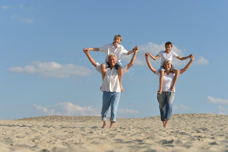Beaux grands-parents avec leurs petits-enfants sur le sable images libres de droits