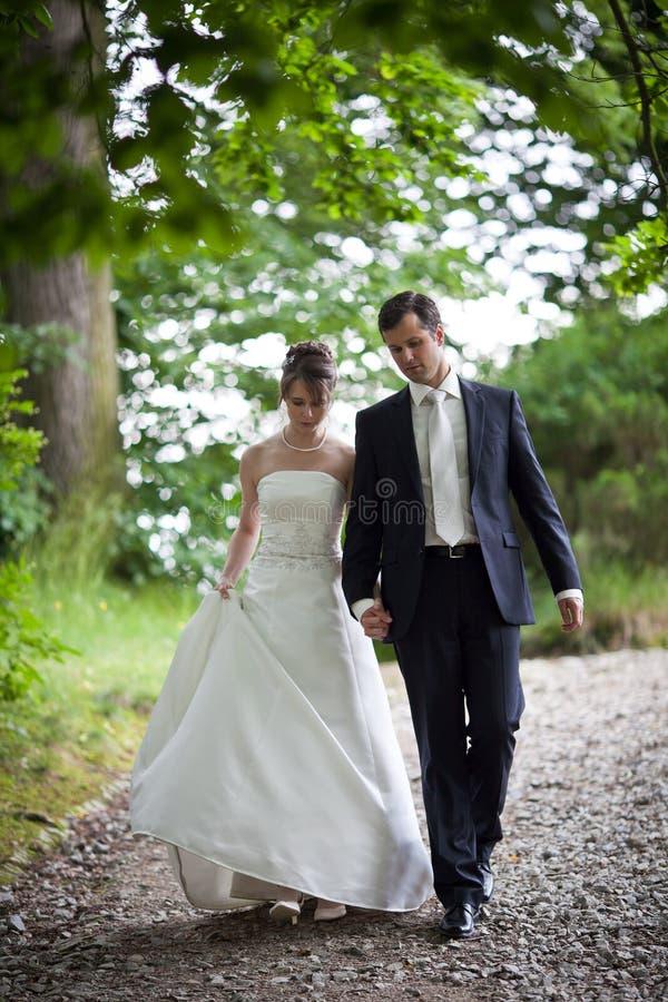 Beaux jeunes couples de mariage photo libre de droits