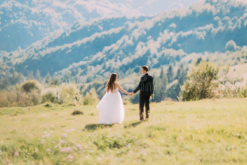 Beaux jeunes mariés marchant de retour tenant des mains sur le pré photographie stock